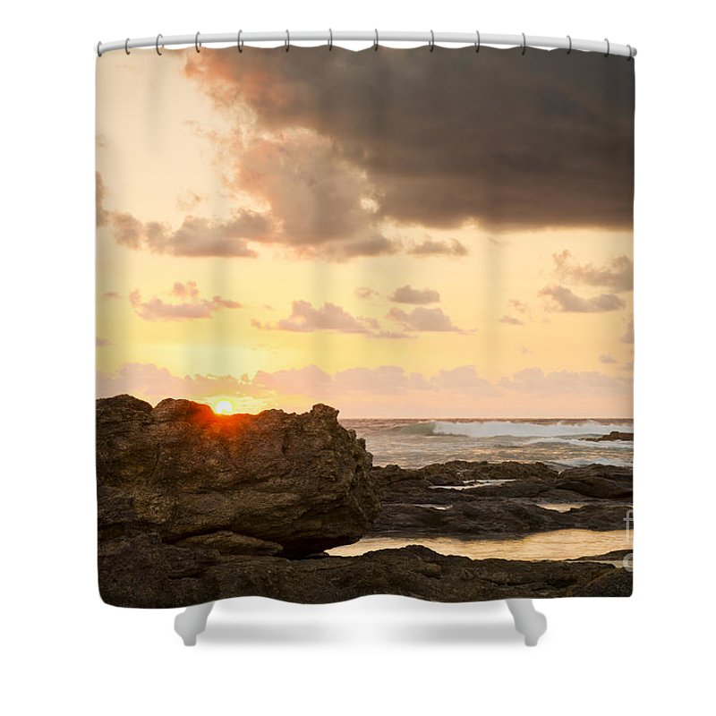 Sunrise Shower Curtain featuring the photograph Sunrise Seagull On Rocks by Tim Hester