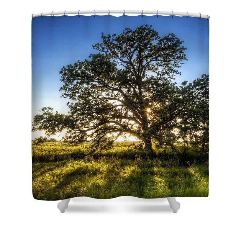 Sunset Shower Curtain featuring the photograph Sunset Oak by Scott Norris