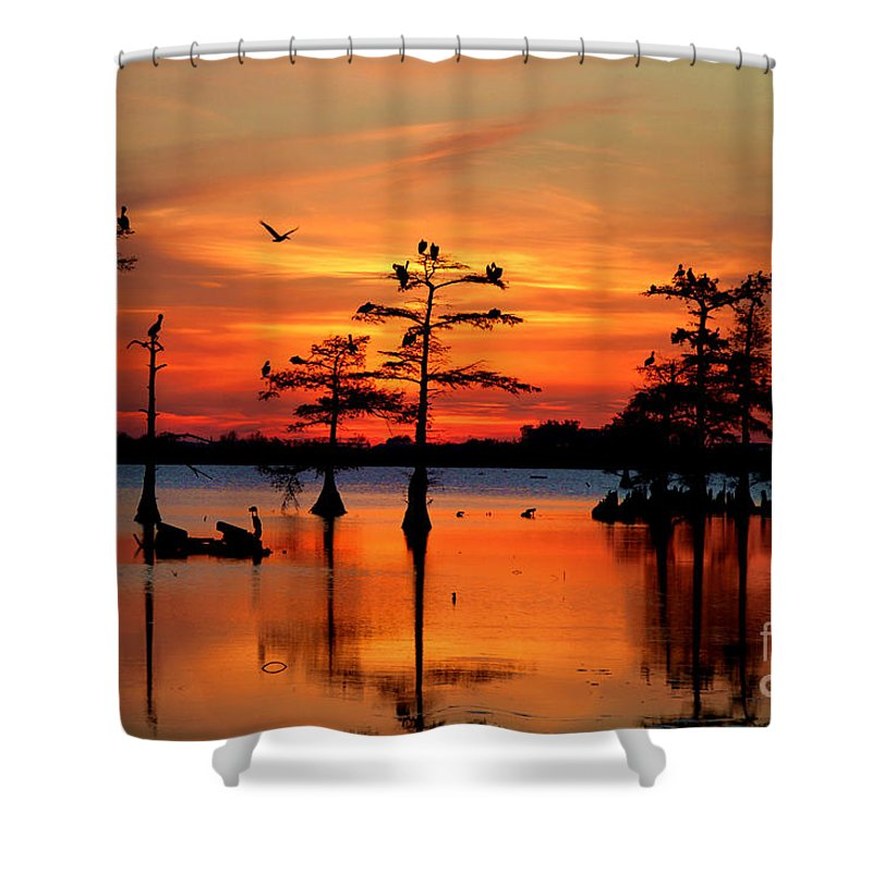 Everglades Shower Curtain featuring the photograph Sunset On The Bayou by Carey Chen