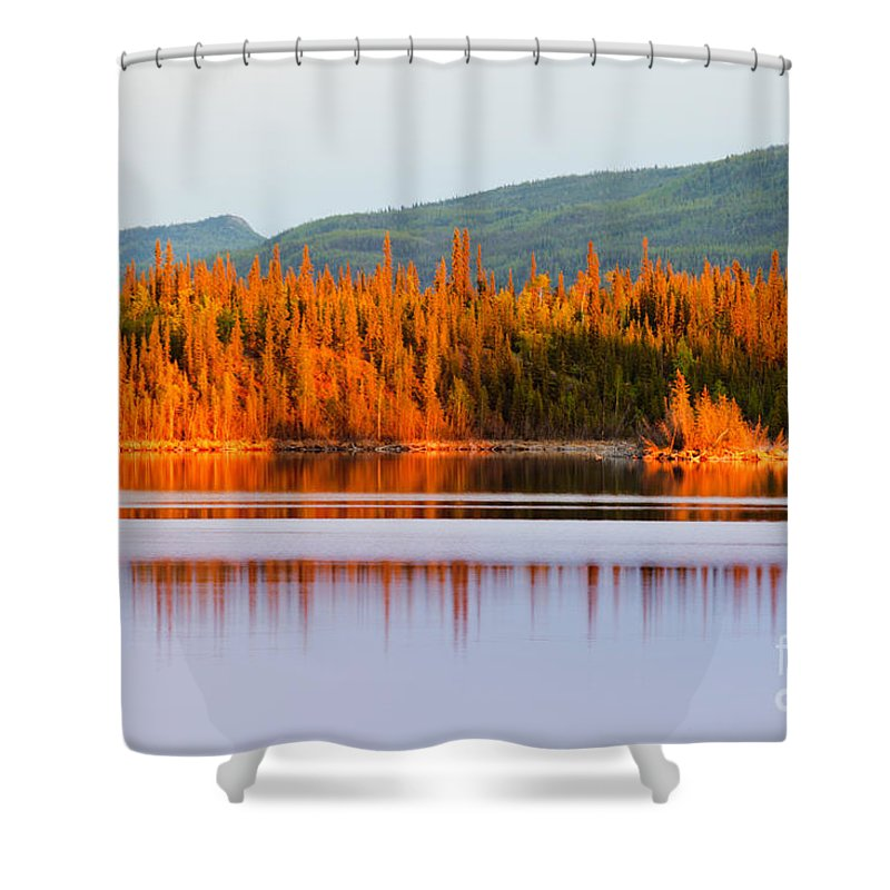 Beautiful Shower Curtain featuring the photograph Sunset Reflections On Boreal Forest Lake In Yukon by Stephan Pietzko