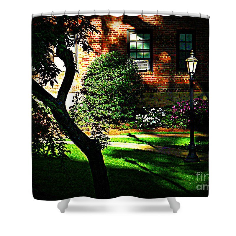 Home Decor Shower Curtain featuring the photograph Sunset Sentinels by Miriam Danar