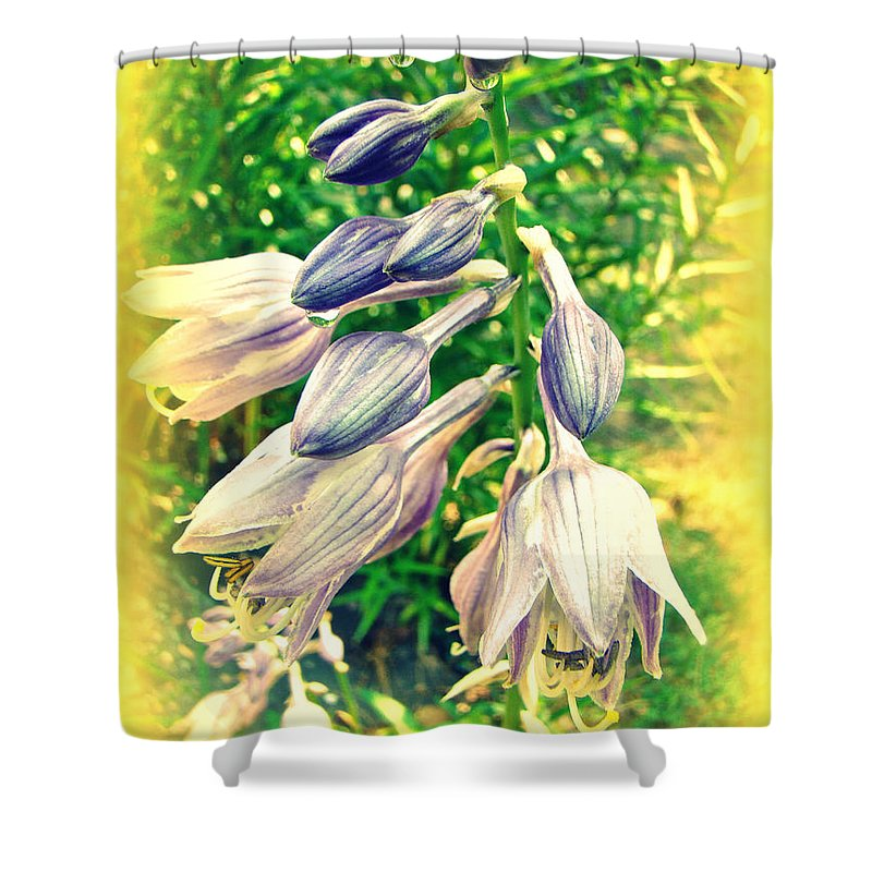 Hostas Shower Curtain featuring the photograph Sunshine And Flowers by Mother Nature