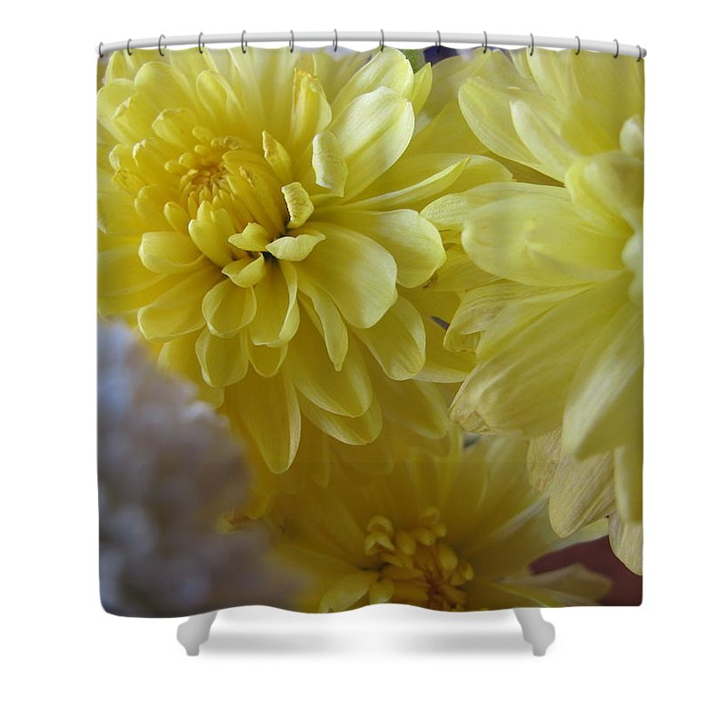 Yellow Flower Shower Curtain featuring the photograph flower - Sunshine in Petals by Kip Krause