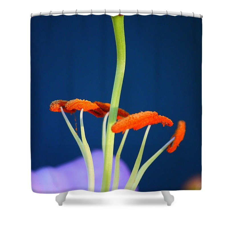 Surreal Inner Beauty Shower Curtain featuring the photograph Surreal Inner Beauty by Patrick Witz