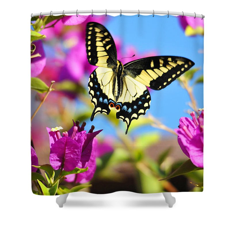 Flowers Shower Curtain featuring the photograph Swallowtail In Flight by Lynn Bauer