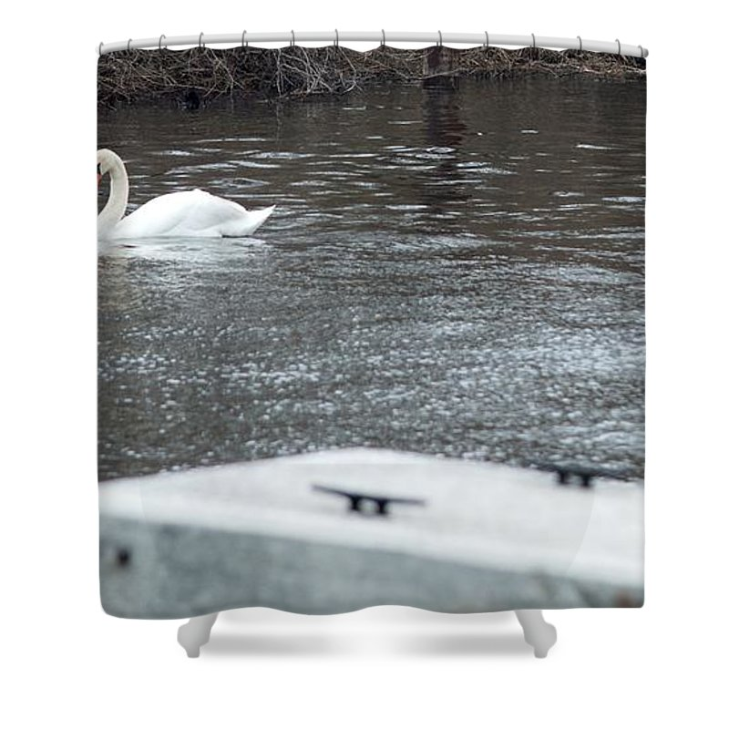 Swan Shower Curtain featuring the photograph Swan On The Water by Linda Kerkau