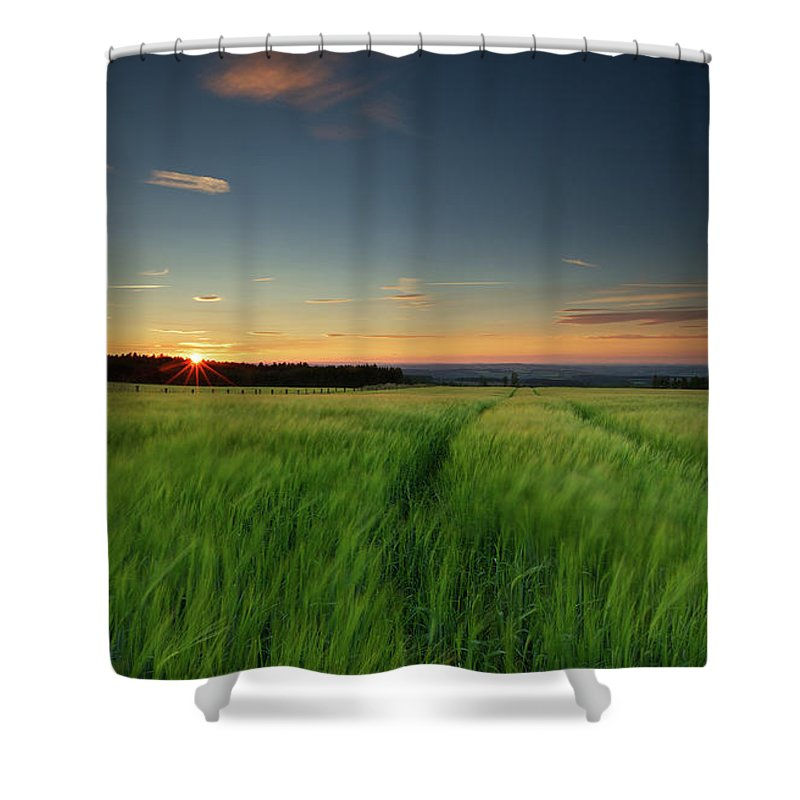 Tranquility Shower Curtain featuring the photograph Swaying Barley At Sunset by By Simon Gakhar