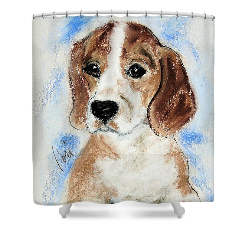 Dog Shower Curtain featuring the drawing Sweet Innocence by Cori Solomon
