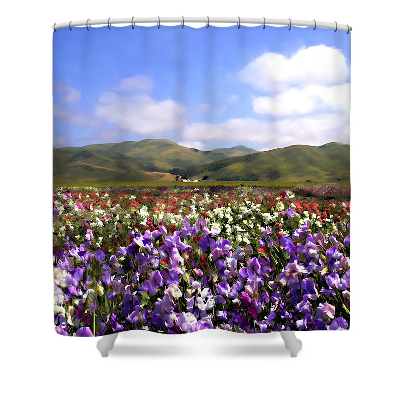 Flowers Shower Curtain featuring the photograph Sweet Peas Galore by Kurt Van Wagner