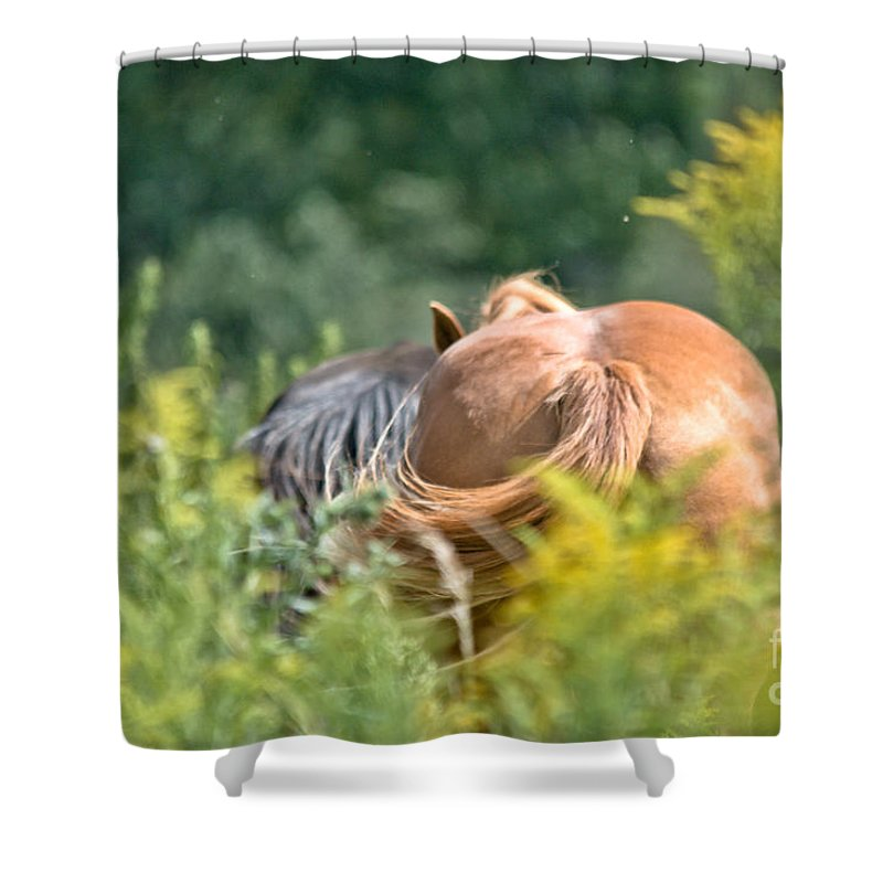 Equine Art Shower Curtain featuring the photograph Swishing Tails by Cheryl Baxter