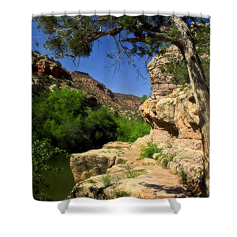 Arizona Shower Curtain featuring the photograph Sycamore Canyon by Kathy McClure