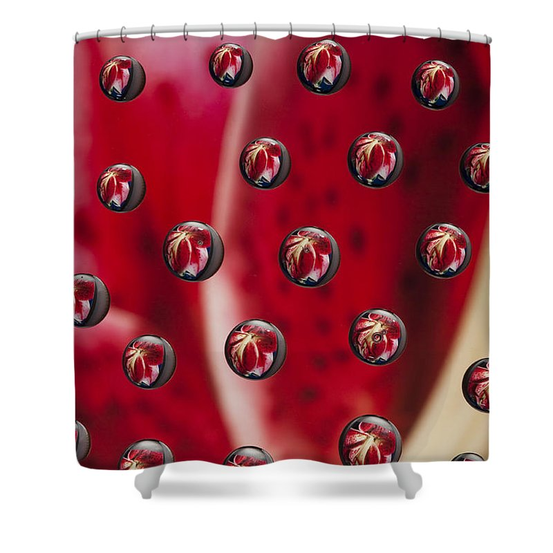 Flower Shower Curtain featuring the photograph Syrup Flower 1 A by John Brueske