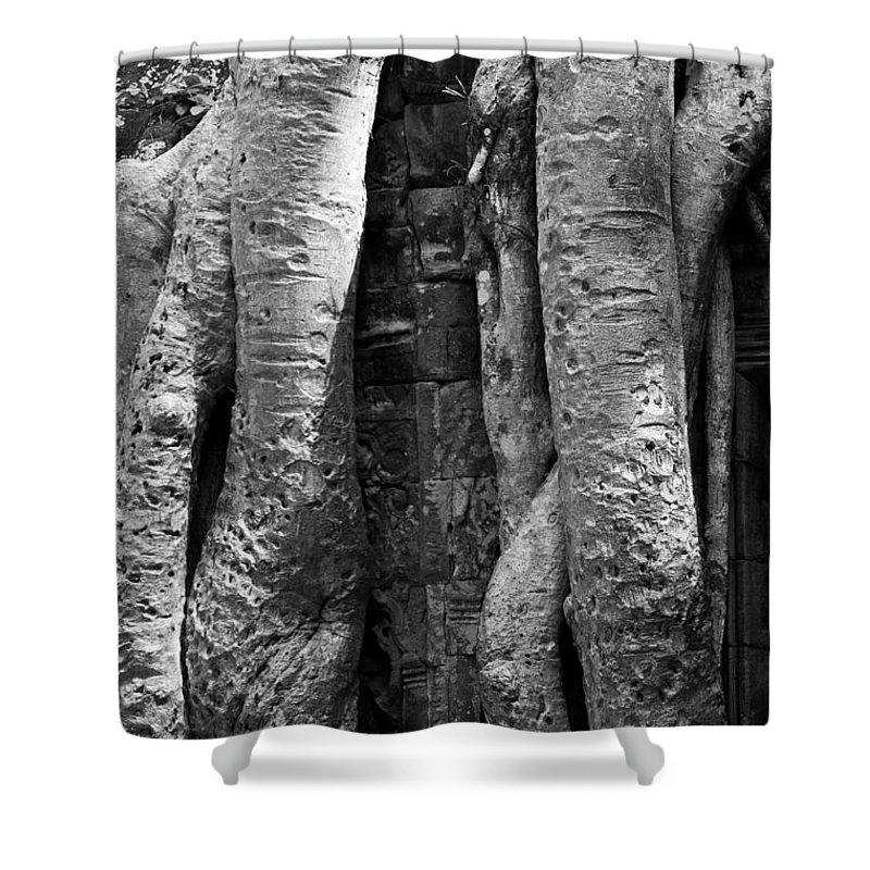 Cambodia Shower Curtain featuring the photograph Ta Prohm Roots And Stone 04 by Rick Piper Photography