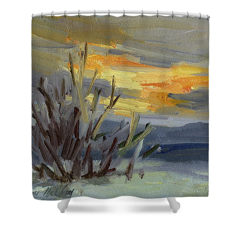Teanaway Shower Curtain featuring the painting Teanaway Valley Winter by Diane McClary