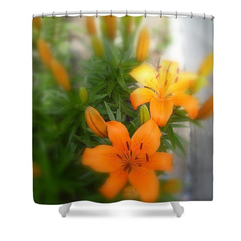 Lily Blooms Shower Curtain featuring the photograph Tender Moments by Lingfai Leung
