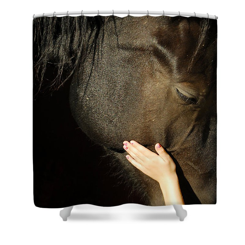 Horse Shower Curtain featuring the photograph Tenderness by Donna Blackhall