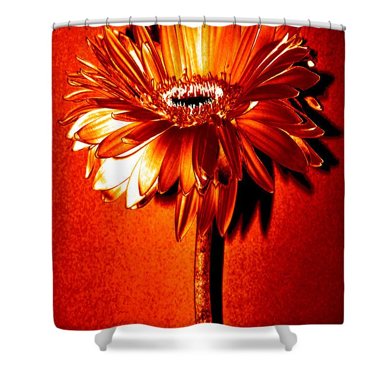 Original Photo Shower Curtain featuring the photograph Tequila Sunrise Zinnia by Sherry Allen
