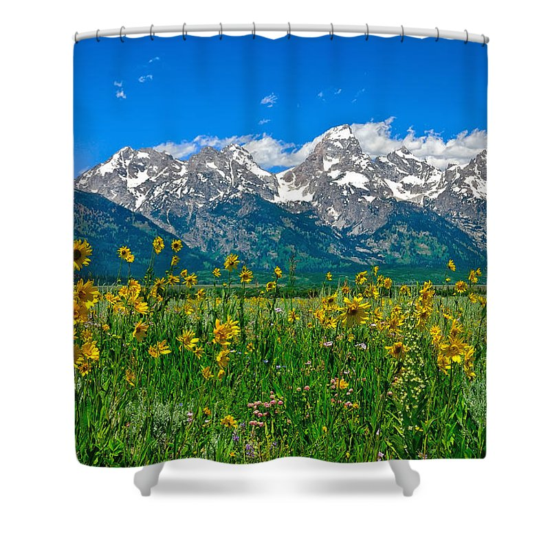 Grand Teton National Park Shower Curtain featuring the photograph Teton Peaks And Flowers by Greg Norrell