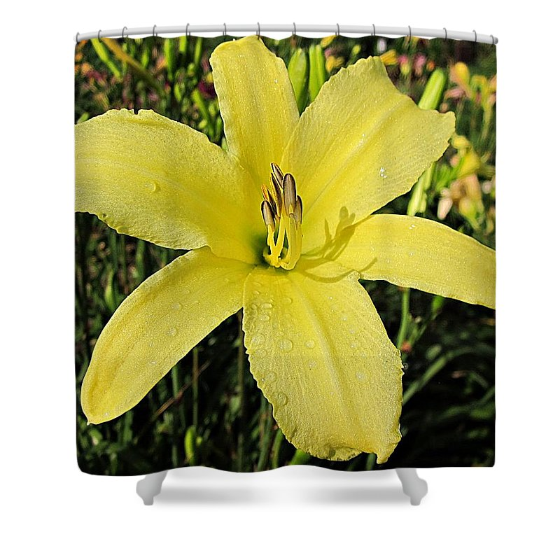 Daylily Shower Curtain featuring the photograph Tetrina's Daughter Daylily by MTBobbins Photography