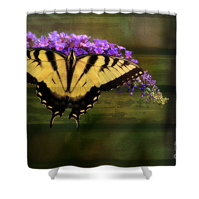 Butterfly Shower Curtain featuring the photograph Textured by Judy Wolinsky