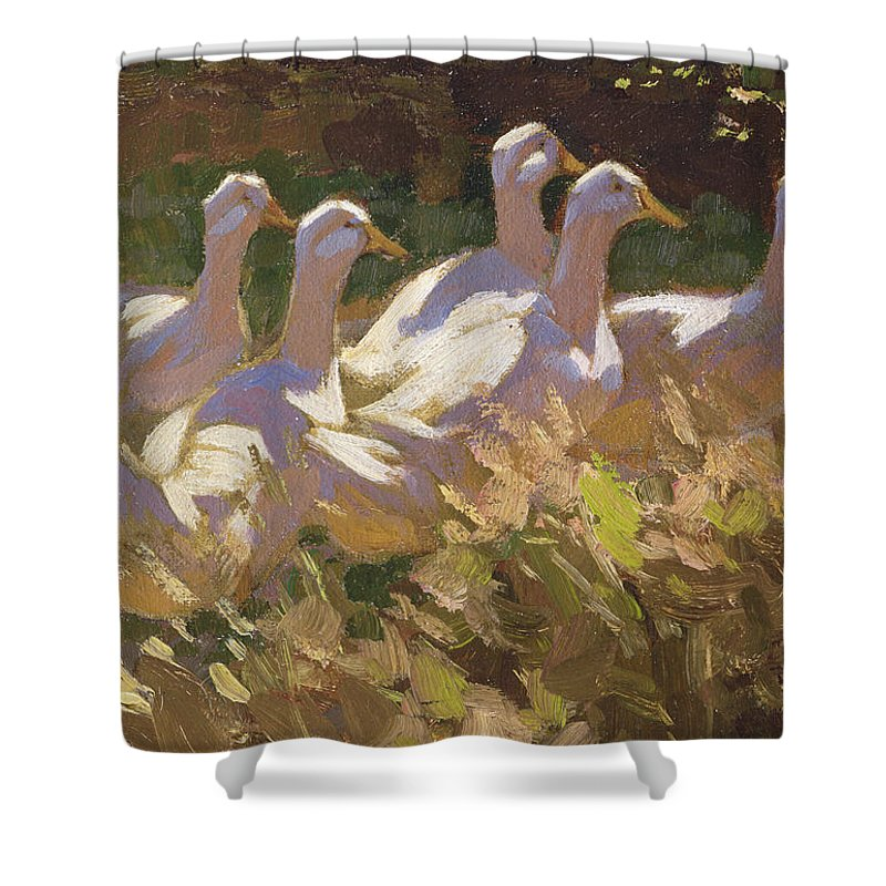 Duck Shower Curtain featuring the painting The Adventurers by Edgar Downs