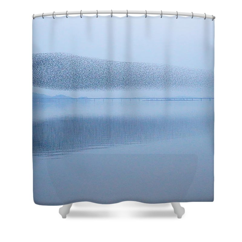 Scenics Shower Curtain featuring the photograph The Baikal Teals by Penboy