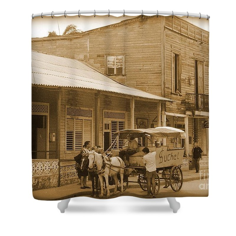 Horses Shower Curtain featuring the photograph The Bakery Truck by John Malone