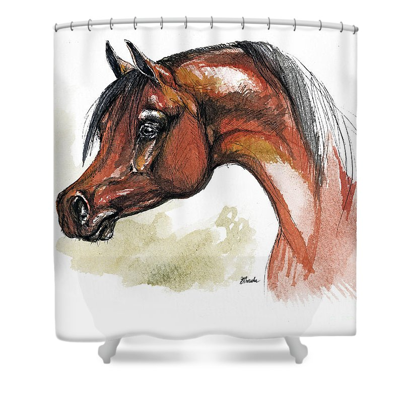 Arab Shower Curtain featuring the painting The Bay Arabian Horse 15 by Angel Tarantella