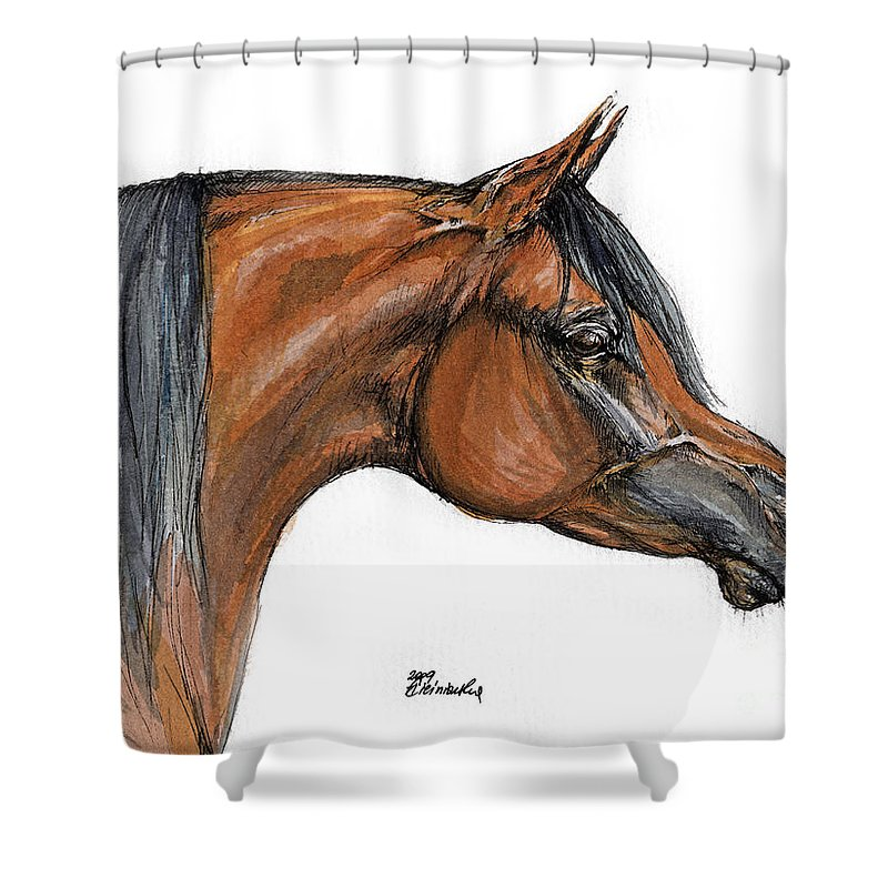 Arabian Shower Curtain featuring the painting The Bay Arabian Horse 18 by Angel Ciesniarska