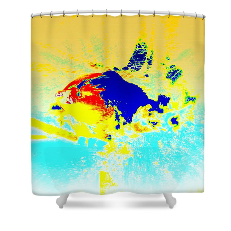 Fish Shower Curtain featuring the photograph The Big Fish Wondering Where To Swim by Hilde Widerberg