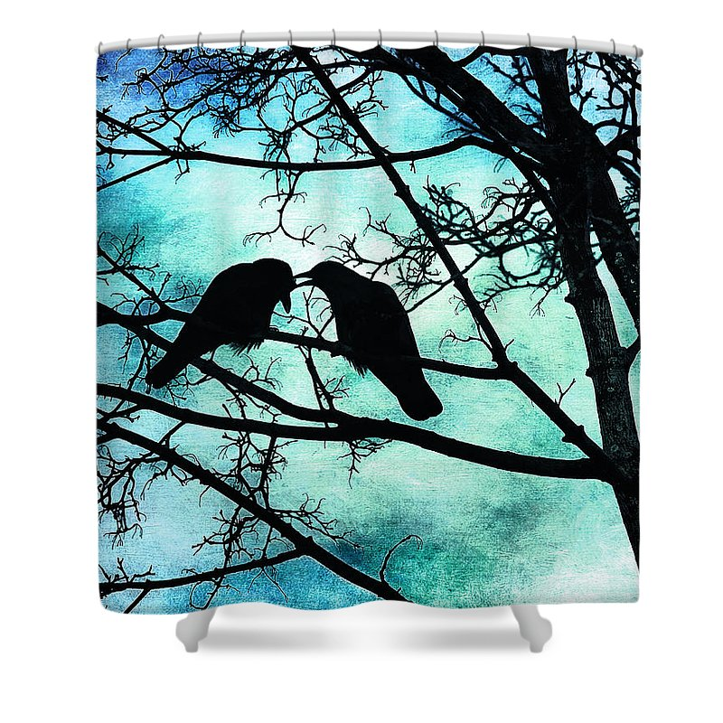 Crows Shower Curtain featuring the photograph The Courtship Of Crows by Tammy Wetzel