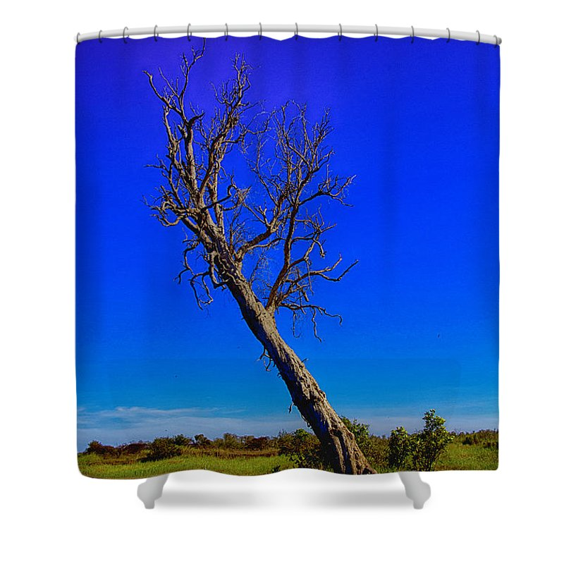 Death Shower Curtain featuring the photograph The Death Of A Tree V5 by Douglas Barnard
