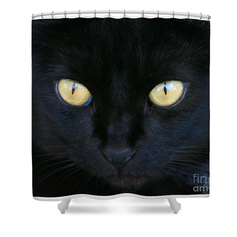 Fauna Shower Curtain featuring the photograph The Eyes Have It by Mariarosa Rockefeller