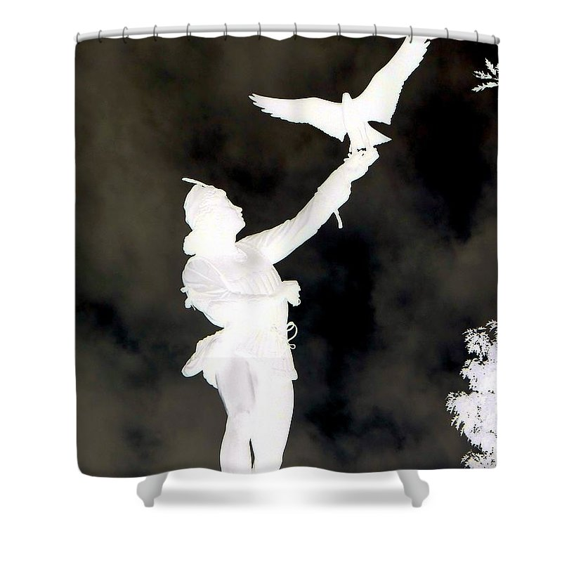 Statue Shower Curtain featuring the photograph The Falconer by Ed Weidman