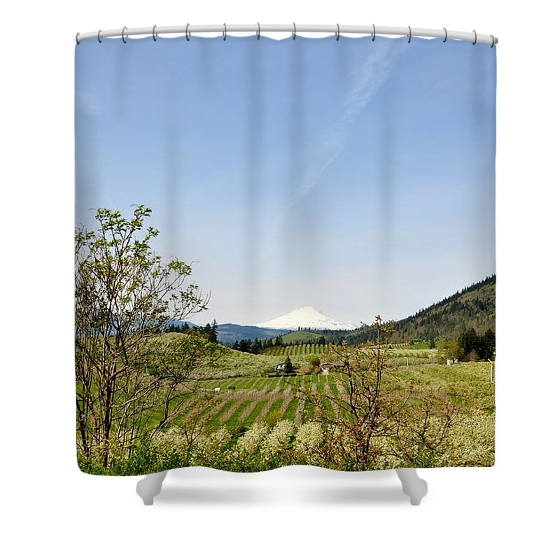 Mount Hood Shower Curtain featuring the photograph The Fruits Of Mount Hood by Image Takers Photography LLC - Laura Morgan and Carol Haddon