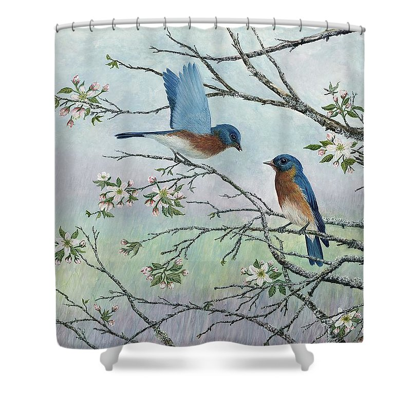 Bluebirds; Trees; Wildlife Shower Curtain featuring the painting The Gift by Ben Kiger
