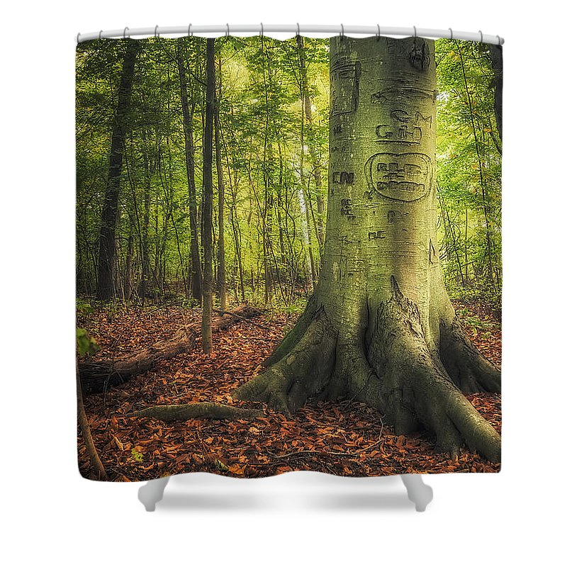 Markings Shower Curtains