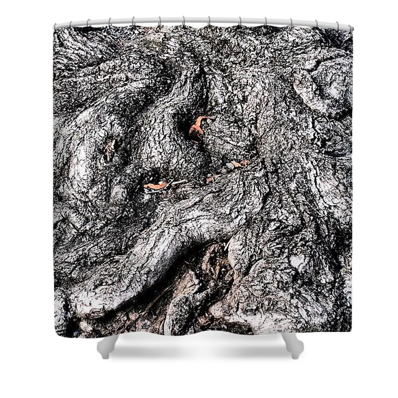 Nature Shower Curtain featuring the photograph The Gnarled Old Tree by Miriam Danar