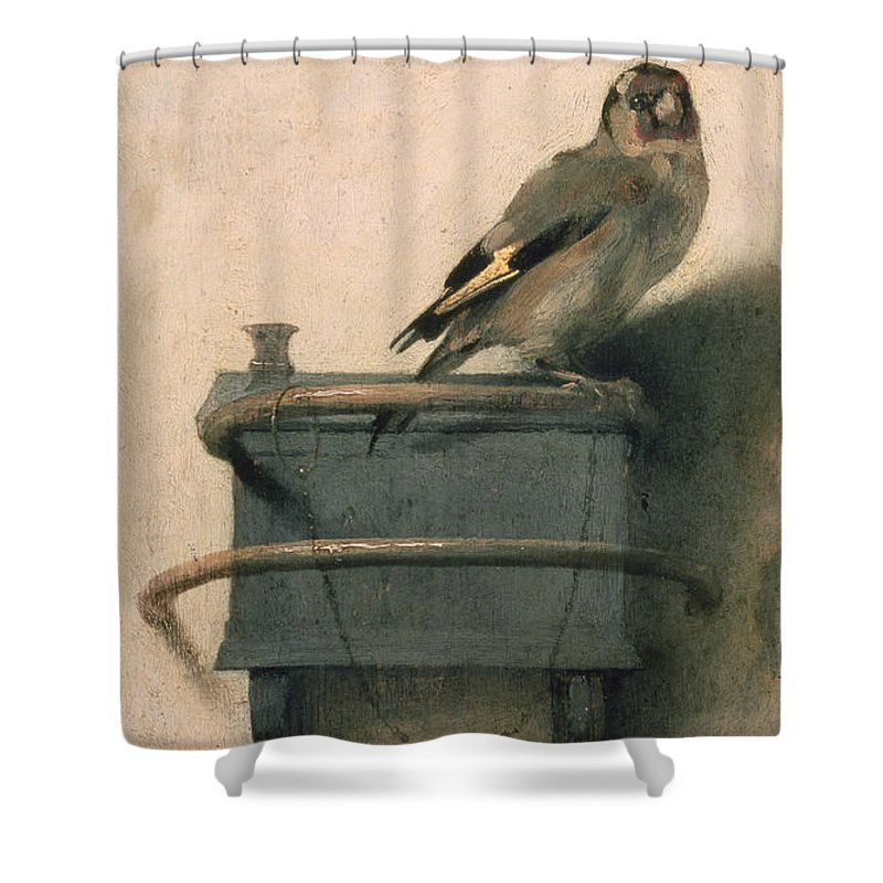 Talon Shower Curtains