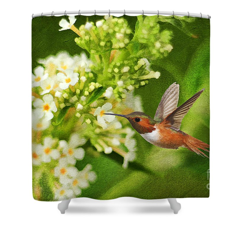 Texture Shower Curtain featuring the photograph The Hummer And The Butterfly Bush by Darren Fisher
