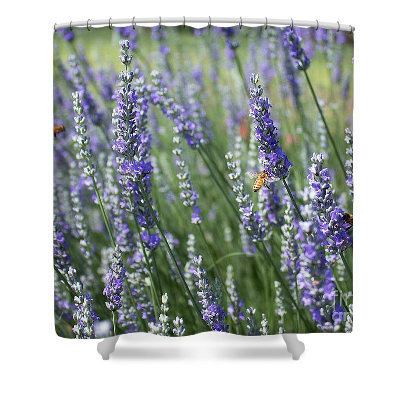 Garden Shower Curtain featuring the photograph The Importance Of Bees by Barbara McMahon