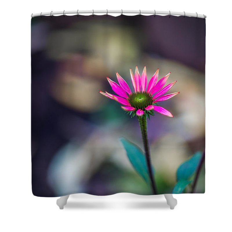 Abstract Shower Curtain featuring the photograph The Last Of Summer - Featured 3 by Alexander Senin