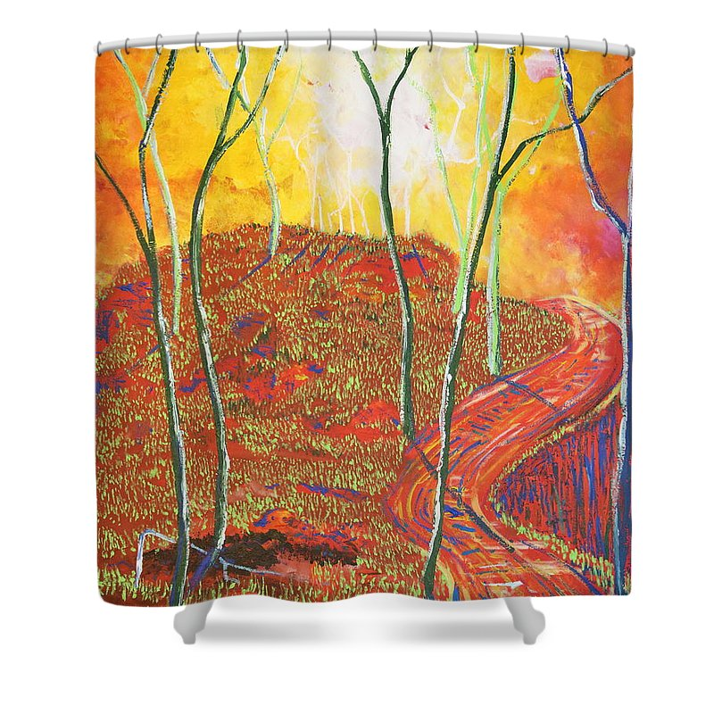Illuminism Shower Curtain featuring the painting The Light That Calls Me by Stefan Duncan