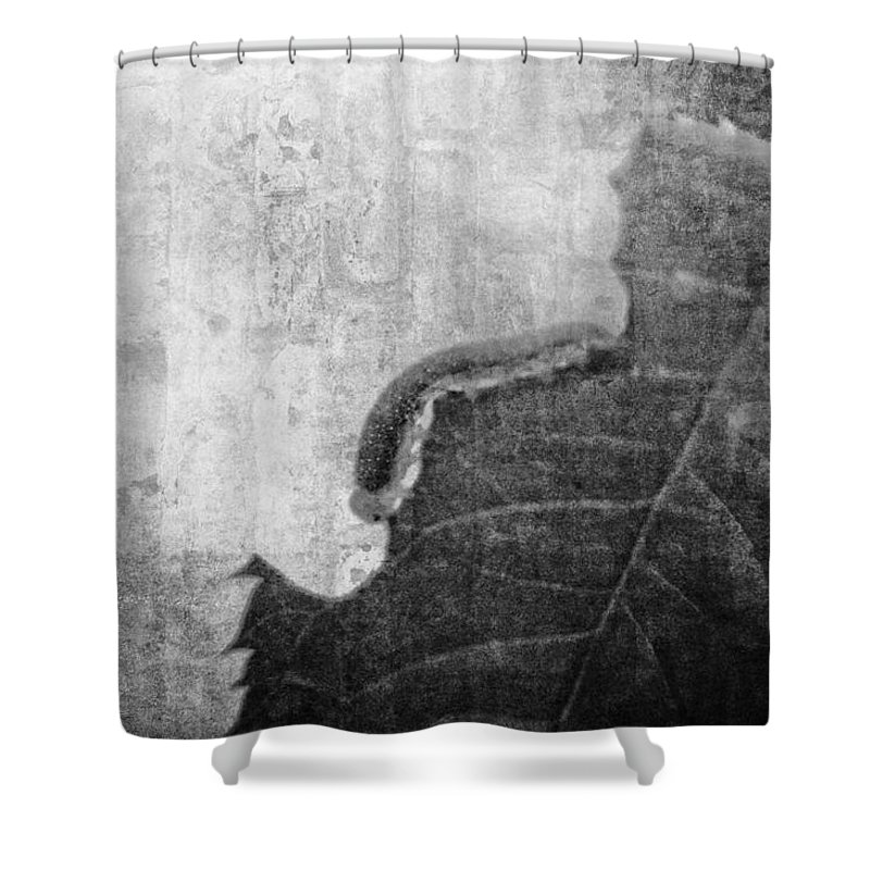 Inchworm Shower Curtain featuring the photograph The Little Inchworm - B And W by Rhonda Barrett