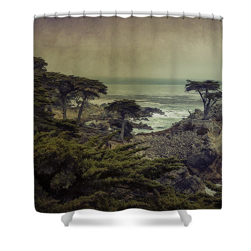 Lone Cypress Shower Curtain featuring the photograph The Lone Cypress by Angela Stanton