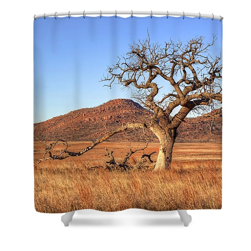 Tree Shower Curtain featuring the photograph The Lone Tree by Ricky Barnard