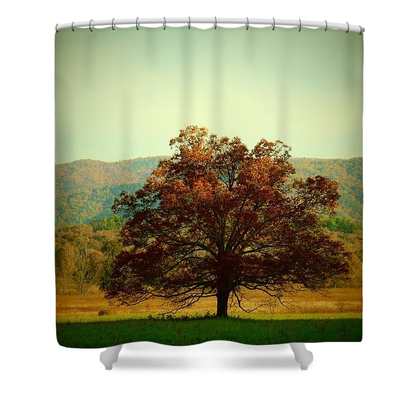 Landscape Shower Curtain featuring the photograph The Lonely Tree by Kathy R Thomas