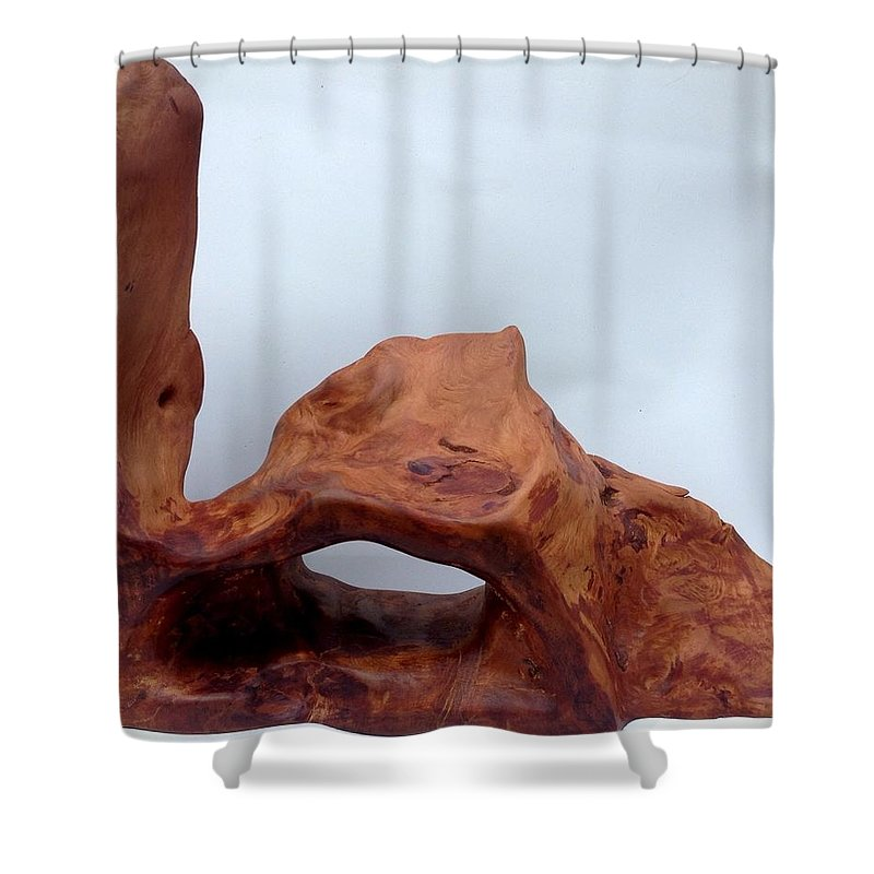 Kauri Wood Shower Curtain featuring the sculpture The Oldest Wood In The World by Robert Margetts