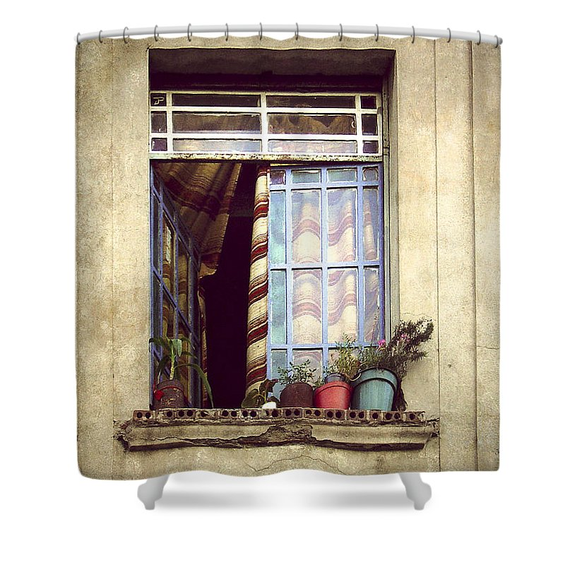 Window Shower Curtain featuring the photograph The Open Window by Julie Palencia