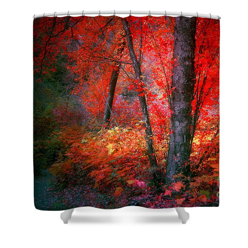Tree Shower Curtain featuring the photograph The Red Tree by Tara Turner